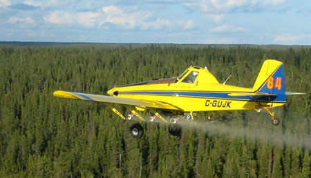Forestry Spraying